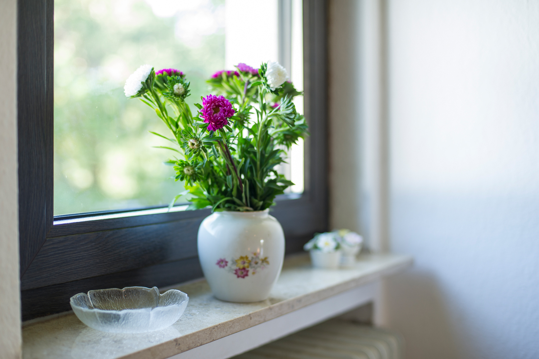 Fensterbank im Zimmer Frieda