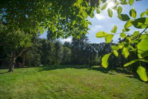 Garten Ferienhaus-Faltmann