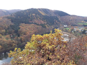 Meuchelberg im Herbst