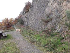 Wanderweg am Meuchelberg