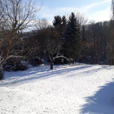 Wanderung mit Hund durch den Schnee