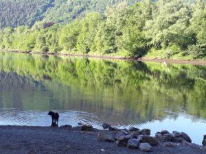 Schwimmen in Heimbach: Kleiner Strand an der Grillhütte in Hasenfeld
